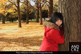 2012-12-24-10re.jpg