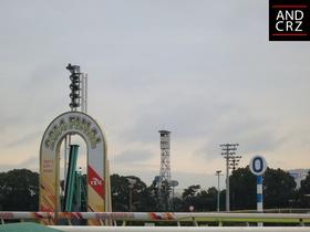 2014-12-30-1.JPG